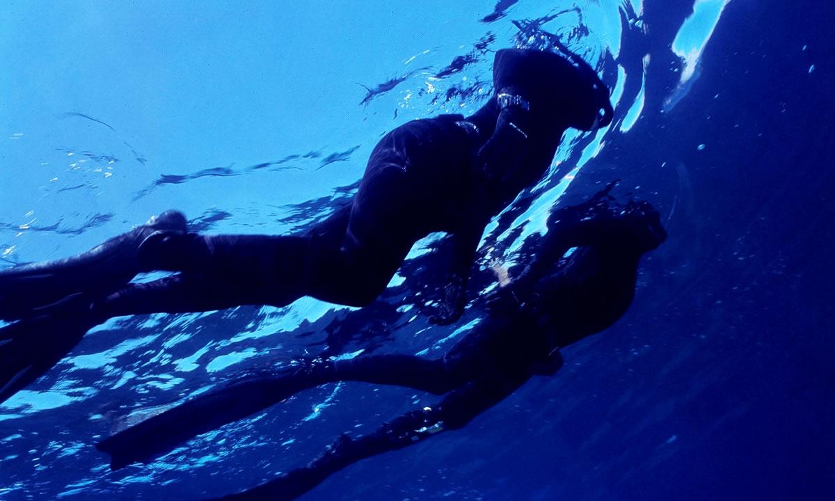 Freediving Club